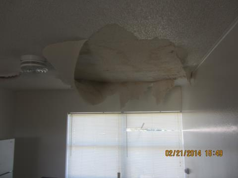 E mail forum Leak in ceiling when it rains